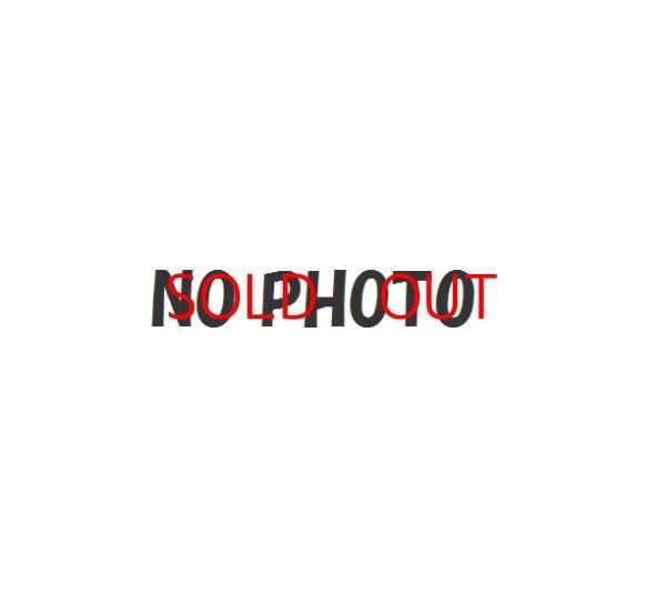 画像1: 【今すぐ飾れるガンプラ】MG 1/100 シャア専用ザク Ver.2.0 塗装済完成品 (1)